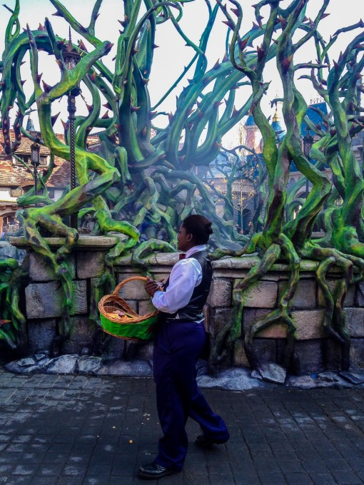 Candy Baskets at Maleficent's Court